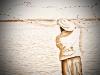 003-fishingcowboystyle_line_orange
