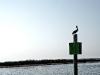 009-pelican_pole_bleachbypass