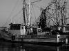 016-fishingboatdock_superbw