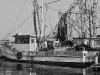 018-fishingboatdock_lightbw